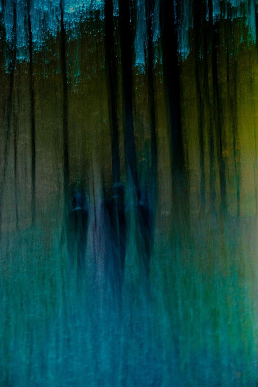 2014_10 Ballade en Forêt Bleue